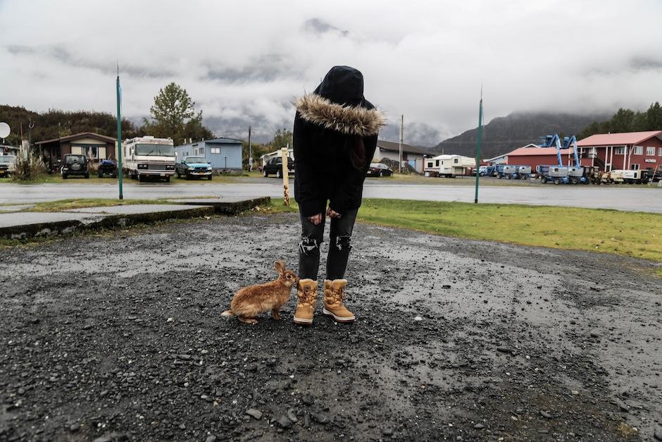alaska-valdez-road-trip-lapins