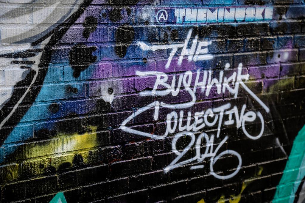 new-york-brooklyn-bushwick-usa