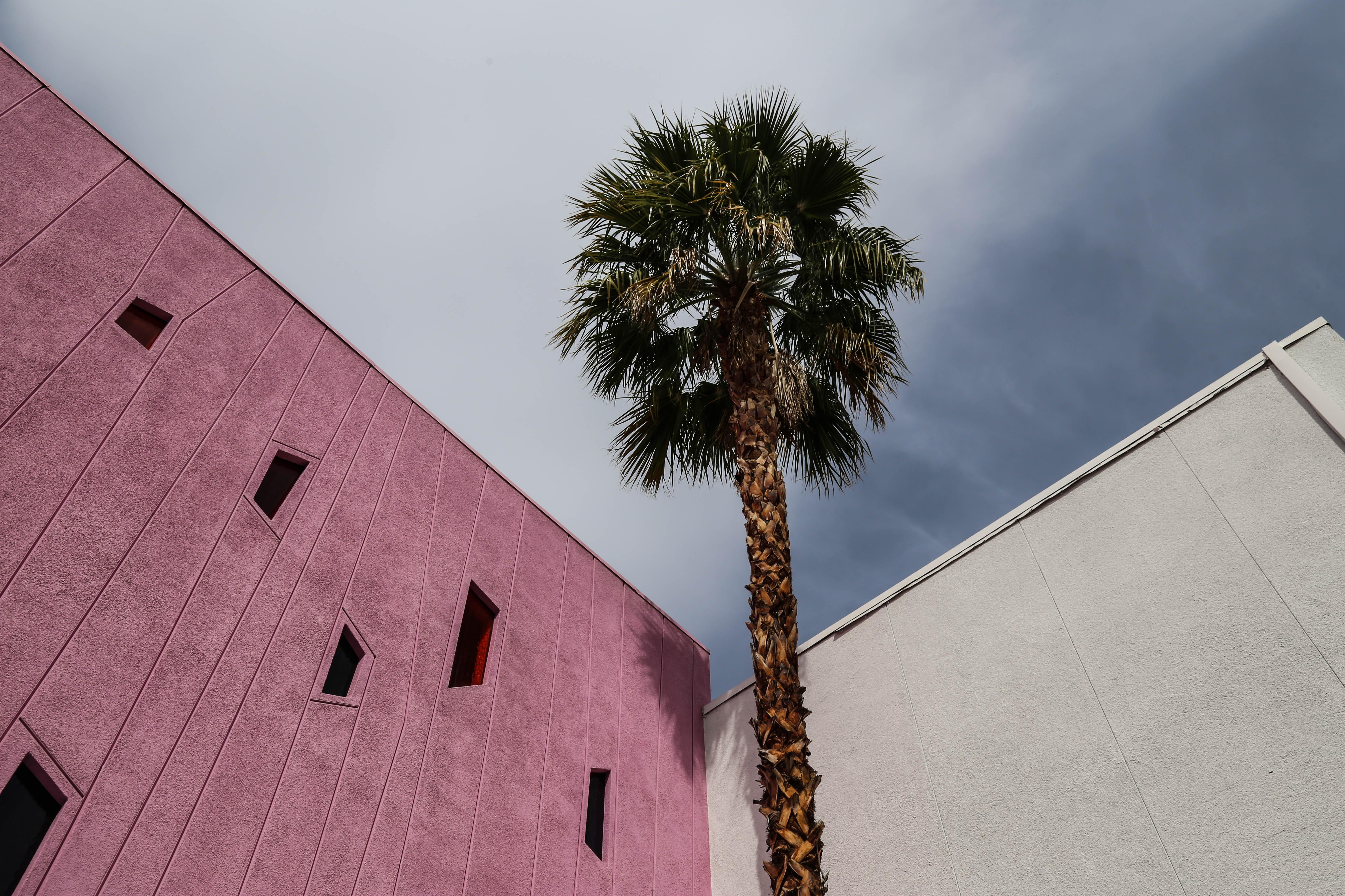 Palm Springs : Vous reprendrez bien une petite Maragarita ?
